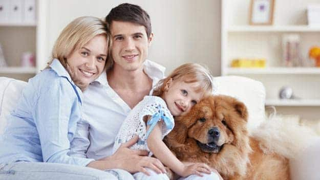 Wills & Trusts dog-young-family Direct Wills Hadley